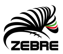 zebre-rugby